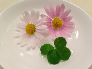 4-leaf clover and flowers